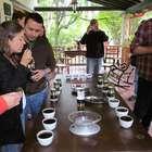 Descubre la riqueza única ¡del café de Colombia!
