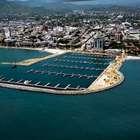 Miles de sardinas muertas prenden alarmas en Santa Marta