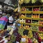 Industria de conservas alimenticias en aumento