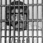SCJN revisa impugnación de condena dictada a Caro Quintero