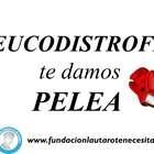 La campaña solidaria de lucha contra las distrofias