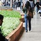 Com mais de 213 mil bolsas, vagas no ProUni crescem 11%