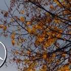 Daimler faz parceria por recarga de carro elétrico sem cabo