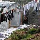 Oposição síria pede ajuda após frio matar 10 pessoas