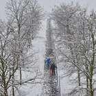 Nieve cancela vuelos y causa 100 accidentes en Alemania