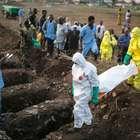 OMS registra menos de 100 casos de ebola por semana