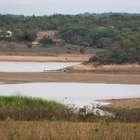 MG pode ter racionamento severo se não chover, diz Pimentel