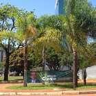 Cunha e Chinaglia espalham cartazes em quadras de deputados