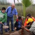 Municipio de Lima y ecologistas limpiarán Pantanos de Villa