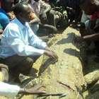 El hombre que se vengó del cocodrilo que devoró a su esposa