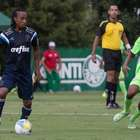 Palmeiras x Capivariano: Terra acompanha a minuto a minuto