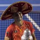David Ferrer es campeón del Abierto Mexicano de Tenis