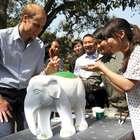 Em visita à China, príncipe William pede fim do comércio...