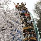 Vuelta al mundo en imágenes: mejores fotos del 01 de abril