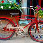 Fotos hermosas de ciclistas y bicicletas por el mundo