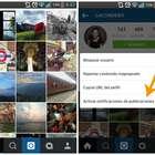 Cómo seguir la actividad de tus favoritos en Instagram
