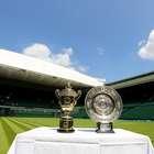 Wimbledon anuncia incremento en sus premios