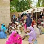 Nigeria libera a 234 mujeres y niños en manos de Boko Haram