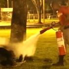 Bombero apaga la llama del amor en las calles de Brasil