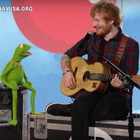 Ed Sheeran y Kermit the Frog cantan 'Rainbow Connection'