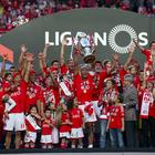 Benfica celebra con victoria su título en Portugal