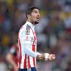 Malas noticias en Chivas al perder por lesión a Jair Pereira