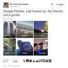 Google Fotos identifica pessoas negras como 'gorilas'