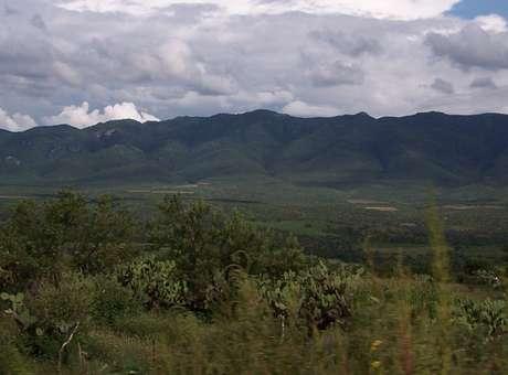Área Natural Protegida de la Sierra Fría Sierrafriaaguascalientes