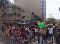 Marcha das Vadias de Curitiba tem grávidas, homens e mães